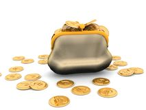 Purse and euro Stock Photography