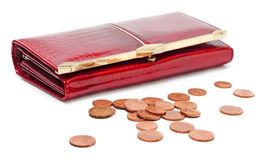 Purse with Euro coins Royalty Free Stock Photo