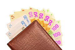 Purse and fan of money Royalty Free Stock Image