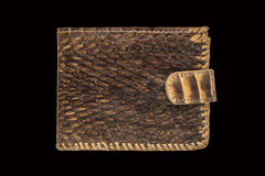 Purse leather snake on a black background. Brown purse made of snake skin on a black background Royalty Free Stock Images