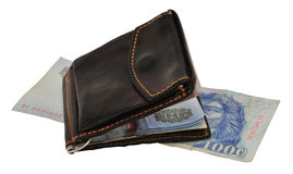 Purse on money Royalty Free Stock Photography