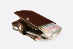 Purse with money. On the white background Stock Images