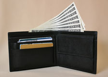 Purse with money. Opened black leather purse with money Royalty Free Stock Photo