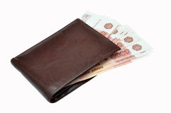 Purse with money Royalty Free Stock Image