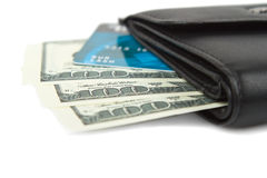 Purse and money. On the white background Stock Image