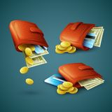 Purse with money, credit cards and coins. Vector Stock Photos