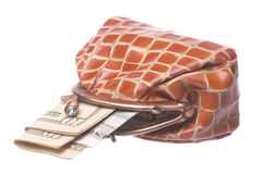 Purse with Money Isolated Stock Photography