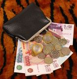 Purse with money on tiger pattern background. Russian currency coins and paper on tiger pattern background Stock Photography