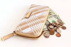 Purse and money Royalty Free Stock Photo