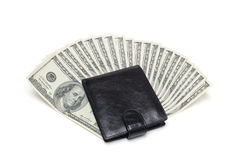 Purse and money. On a white background Royalty Free Stock Photos