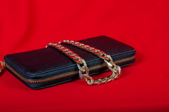Purse and a necklace on  red background Royalty Free Stock Images