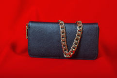 Purse and a necklace on  red background Royalty Free Stock Photos