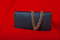 Purse and a necklace on  red background Royalty Free Stock Photography