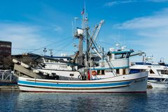 Purse seiners moored at fisherman`s terminal in Seattle Washington. Purse seine fishing can be a relatively sustainable way of fishing, as it can result in Royalty Free Stock Image