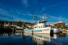 Purse seiners moored at fisherman`s terminal in Seattle Washington. Purse seine fishing can be a relatively sustainable way of fishing, as it can result in Stock Photos
