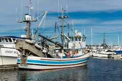 Purse seiners moored at fisherman`s terminal in Seattle Washington. Purse seine fishing can be a relatively sustainable way of fishing, as it can result in Stock Images