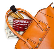 Purse and wallet. Brown purse with a wallet and brush in it on a white background Royalty Free Stock Photography