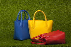 Purses on green grass Stock Photography