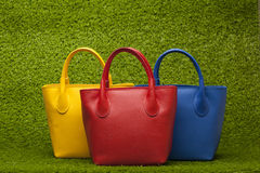 Purses on green grass Royalty Free Stock Photo