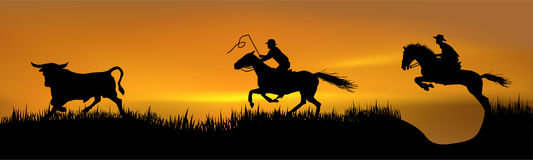 Pursuit of 2 cowboys. For a young bull royalty free illustration