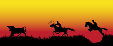 Pursuit of 2 cowboys. For a young bull Royalty Free Stock Photo