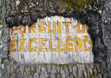 Pursuit of excellence. Written on tree bark royalty free stock photos