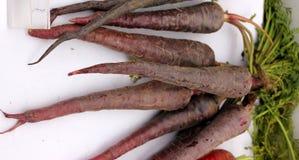 Pusa hybrid Carrot. Daucus carota var. sativa, developed by IARI, lighter purple black cylindrical narrower variety with flesh darker on periphery, orange royalty free stock images