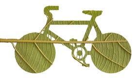 Pushbike da licença verde Imagens de Stock