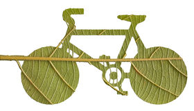 Pushbike from green leave Stock Images