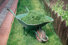 Pushcart full of cutted grass Stock Images