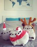 Pusheen τα παιχνίδια βελούδου γατών που ντύνονται για τα Χριστούγεννα που περιμένουν Άγιο Βασίλη Στοκ Εικόνα