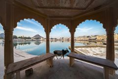 pushkar湖,拉贾斯坦,印度看法  免版税库存照片