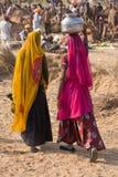 普斯赫卡尔,印度。 库存照片