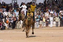 Pushkar справедливый (верблюд Mela Pushkar) Раджастхан, Индия Стоковые Изображения