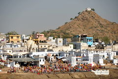 Pushkar Royalty Free Stock Images