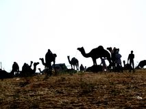 Pushkar Stock Photography