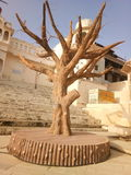 Pushkar royalty-vrije stock afbeelding