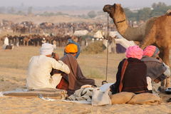 Pushkar Camel Fair Stock Photography