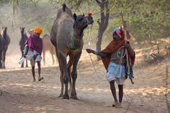 Pushkar Camel Mela (Pushkar Camel Fair) Stock Image