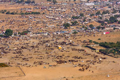 Pushkar Camel Mela (Pushkar Camel Fair) Royalty Free Stock Photos