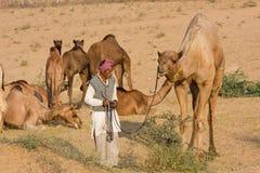 Pushkar Camel Mela ( Pushkar Camel Fair ) Stock Photos