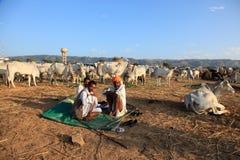 Pushkar Fair Royalty Free Stock Images