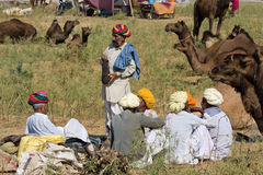Pushkar Fair ( Pushkar Camel Mela ) Rajasthan, India Stock Photo