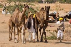Pushkar Fair ( Pushkar Camel Mela ) Rajasthan, India Royalty Free Stock Photos