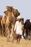 Pushkar Fair ( Pushkar Camel Mela ) Rajasthan, India Royalty Free Stock Photos