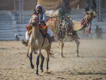 Pushkar Festival-India Royalty Free Stock Photo