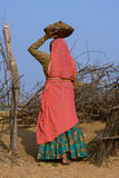 Pushkar ganska (den Pushkar kamlet Mela) Rajasthan, Indien arkivbilder