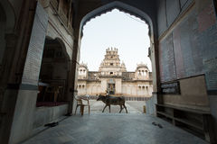 PUSHKAR, INDIA - JAN 08: Entrence of a Hindi Temple of Pushkar o Royalty Free Stock Photography
