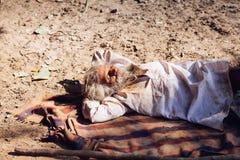 PUSHKAR, INDIA - 16 januari, Dakloze de mensenslaap van 2017 op stree Stock Foto's