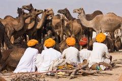 Pushkar, India. Stock Photos